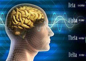 gelombang otak manusia